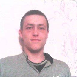 Виктор, 28 лет, Шаранга