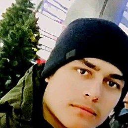 Шамиль, 20 лет, Нижний Новгород