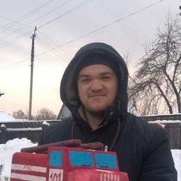Александр, 28 лет, Лебедин