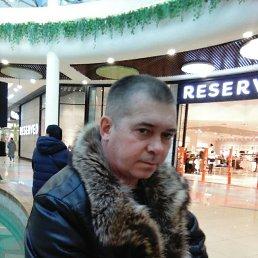 Николай, 43 года, Тюмень