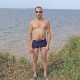 Mega, Новосибирск, 37 лет