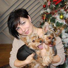 Ольга, 37 лет, Иркутск
