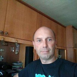 Александр, 44 года, Миргород
