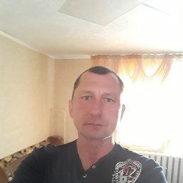 Елисей, 44 года, Алтайское