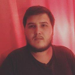 Данил, 21 год, Курган