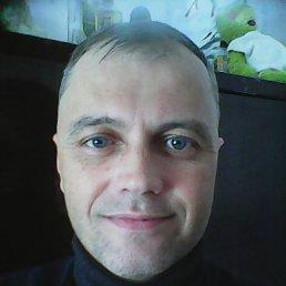 Слава, 45 лет, Богодухов