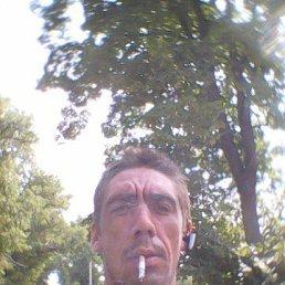 Алексей, 30 лет, Таловая