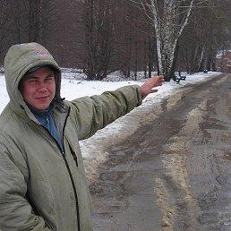 Евгений, 37 лет, Электрогорск