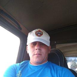 Евгений, 29 лет, Колпашево