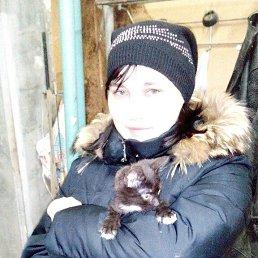 Евгения, 29 лет, Серов