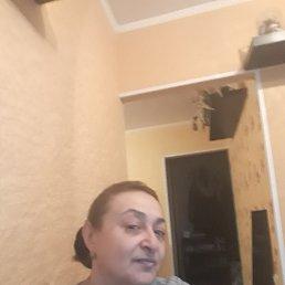 Лариса, 59 лет, Белгород