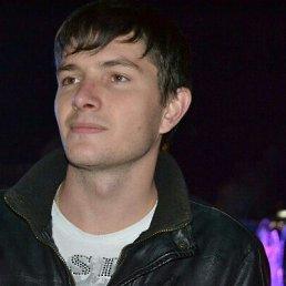 adam, 36 лет, Ярославль