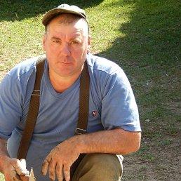 Михаил, 57 лет, Демянск