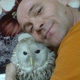 Михаил, 49 лет, Копейск