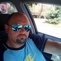 Attila, 39 лет, Берегово