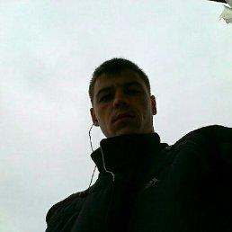 Дмитрий, 28 лет, Новобурейский