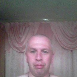 Алексей, 40 лет, Сафоново