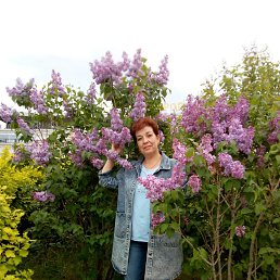 Ольга, 53 года, Оболенск