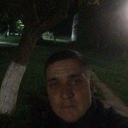 Костя, 29 лет, Сочи