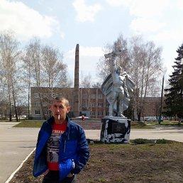 алексей, 41 год, Кимовск