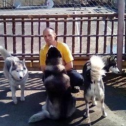 геннадий, 43 года, Великий Новгород