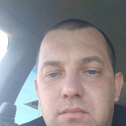 Пётр, 35 лет, Шипуново