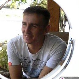 Алексей, 30 лет, Владивосток