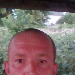 Сергей, 35 лет, Староконстантинов