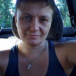 Елена, 40 лет, Кемерово