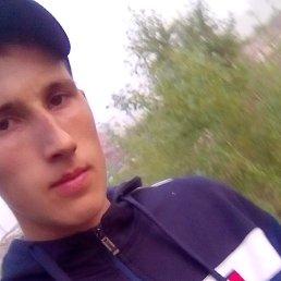 Илья, 21 год, Асино