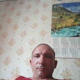 Саша, 43 года, Смела
