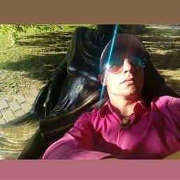 Сергей, 39 лет, Минск