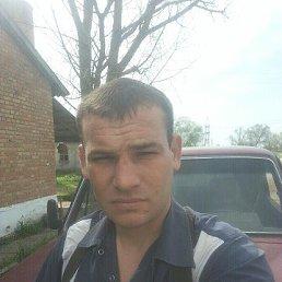 Дмитрий, 29 лет, Ставрополь