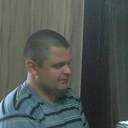 alex, 37 лет, Сокиряны