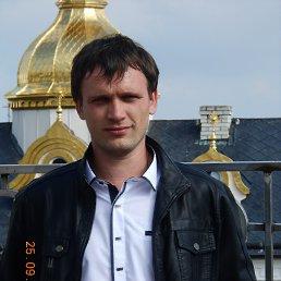 Oleksandr, 30 лет, Гусятин