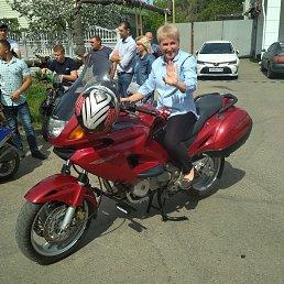 Ольга, 52 года, Выселки