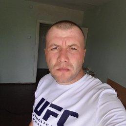 Олег, 33 года, Яворов