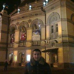 Андрей, 35 лет, Красноармейск