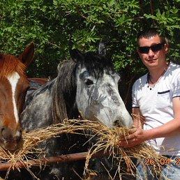 Вова, 39 лет, Лубны