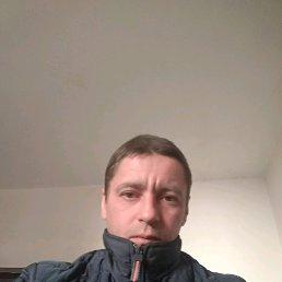 Сергей, 40 лет, Бердичев