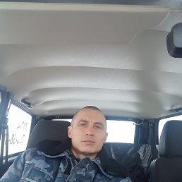 Саша, 37 лет, Купянск