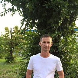 Руслан, 42 года, Северодонецк