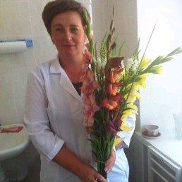 Таня, 44 года, Горохов