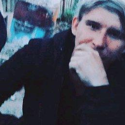 Саша, 27 лет, Волосово