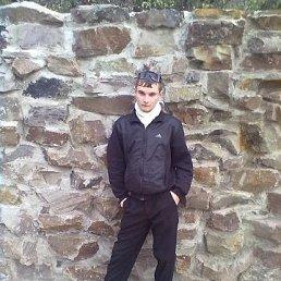 Дмитрий, 27 лет, Бахмут