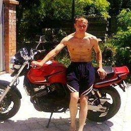Денис, 37 лет, Горловка