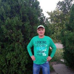 Александр, 48 лет, Васильковка