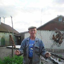 Алексей, 61 год, Белгород