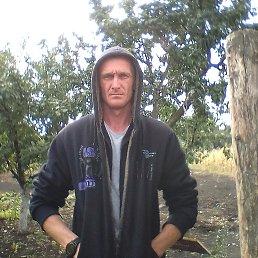 Александр, 27 лет, Красноармейск
