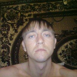 Дмитрий, 27 лет, Ровеньки